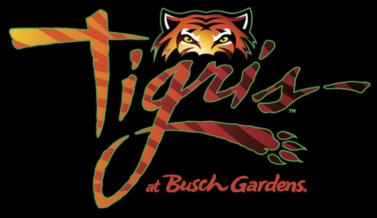 Tigris™: A nova montanha russa do Busch Gardens
